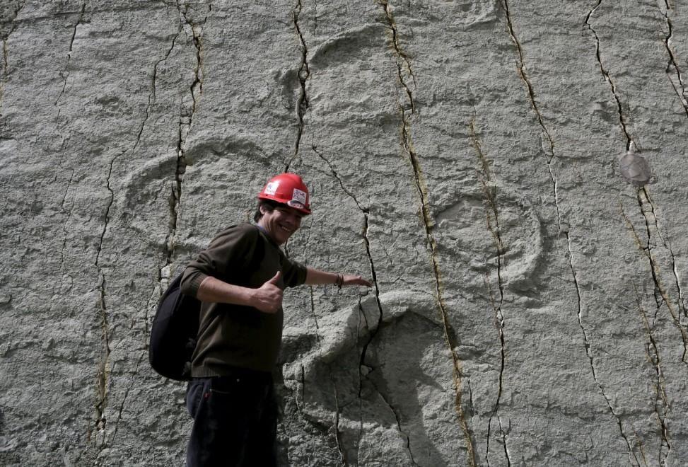 Dinosauri, passaggio in Bolivia: trovate le impronte degli ultimi giganti