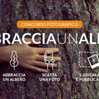 #abbracciaunalbero, il Wwf lancia il contest fotografico sui social