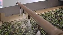 Si produrrà metano dalle acque di scarto