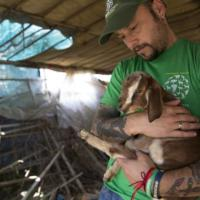 Terremoto in Nepal, Ong in soccorso degli animali tra le macerie