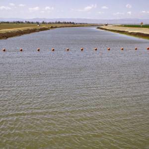 L'acqua cambia verso: nel mondo tornano le società pubbliche per le reti idriche