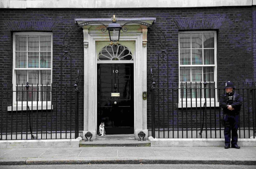 Londra, il gatto Larry vigila su Downing Street