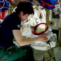 """AstroSam, l'agenzia spaziale russa:""""Non confermato il rientro per l'11 giugno"""""""