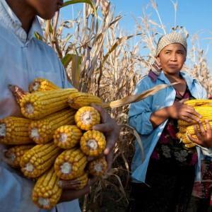 Nutrire il pianeta è una sfida globale