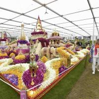 Colori, profumi e fantasia: al Chelsea Flower Show i giardini più belli