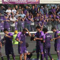 Fiorentina-Parma, il film della partita