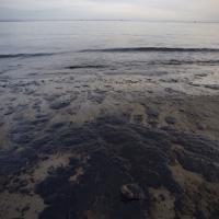 California, oleodotto si guasta: forse 400mila litri di petrolio in mare