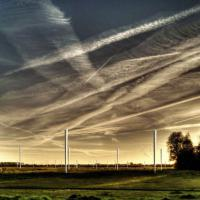 Le turbine eoliche senza pale: producono energia oscillando