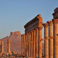 I siti sostenuti dalle donazioni dei filantropi, e c'è anche Palmira