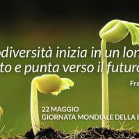 Giornata mondiale della biodiversità: a rischio una specie su cinque