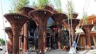 Tra orti verticali ed effetti speciali La vetrina dei 53 padiglioni Expo