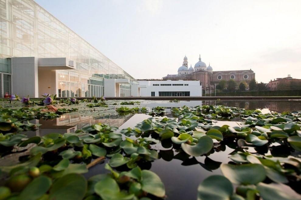 Il Giardino Della Biodiversita NellOrto Botanico Piu