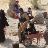 """Iraq, il Pentagono contro esercito Bagdad: """"Non hanno voluto combattere per salvare Ramadi..."""