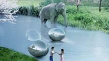 """Visitatori """"in gabbia"""" e animali liberi: lo zoo del futuro è qui"""