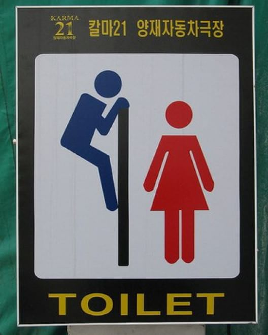 toilette segui il cartello i pi strani finiscono