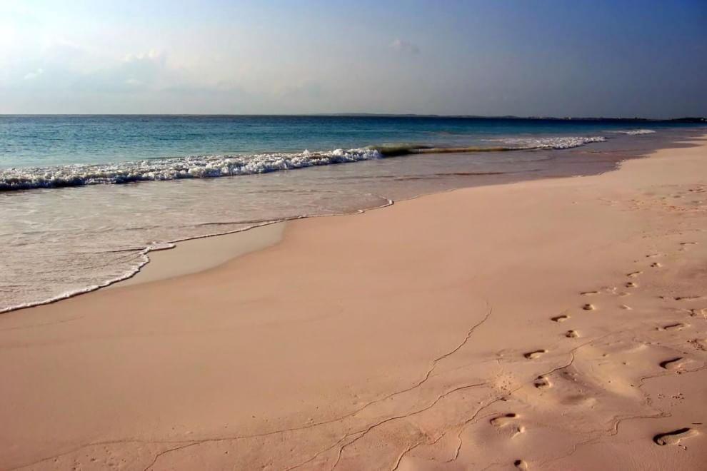 """Piccoli paradisi rosa: ecco le """"pink beach"""" più belle del mondo - Repubblica.it"""