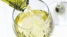 Vino, anche il bianco  fa bene: un bicchiere al dì protegge cuore e reni