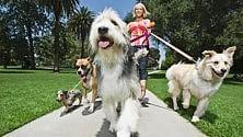 """Cercasi """"Dog walker"""", un lavoro da 26.500 sterline"""