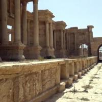 Palmira e la democrazia della cultura