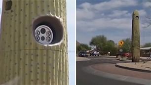 Attenti a quel cactus: è finto e nasconde un autovelox