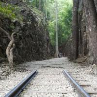 Amazzonia, la ferrovia che attraversa la foresta e minaccia le tribù indigene