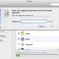 Apple, un bug mette a rischio le password