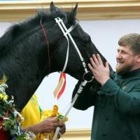 I cavalli sequestrati agli oligarchi russi