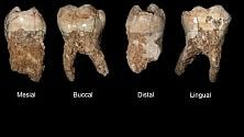 L'uomo inquinava già 400mila anni fa Lo dicono i suoi denti