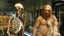 """Visse in Romania il più antico europeo """"nipote"""" di un Neanderthal"""