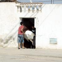Strage in Tunisia, la casa dell'attentatore