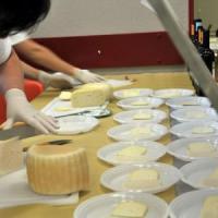 Quei 400 formaggi che senza latte perderanno il loro gusto