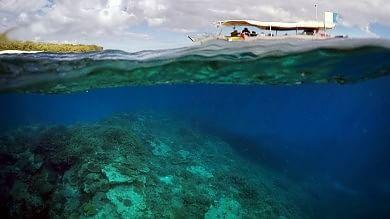 Australia-Unesco alla stretta finale Barriera corallina a rischio blacklist   foto