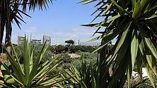 Il Central Park di Beirut dove entrano    foto    solamente i turisti