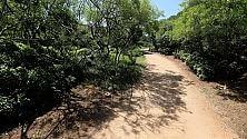 Camminare nella natura scaccia i pensieri negativi
