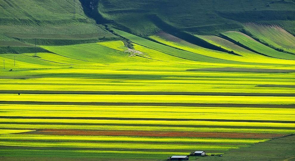 Foto. Castelluccio e le stagioni della Fiorita -   Leggi