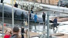 Balene, riapre la caccia  denuncia di Greenpeace