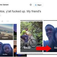 Afroamericani scambiati per gorilla: la gaffe di Google