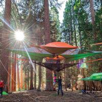 Sospesi nel bosco: in campeggio con la tenda-amaca