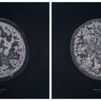 Indovina la lacrima al microscopio