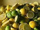 Bergamotto, tre giorni di convegno sui 'superpoteri' dell'agrume di Calabria