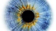 Gli occhi cercano i ricordi muovendosi da sinistra a destra