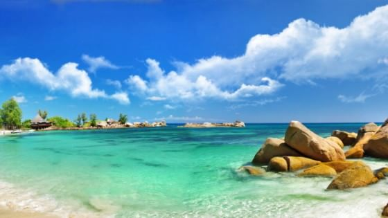 Dove i tropici si incontrano