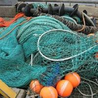 Consumi, scatta il fermo pesca nel mare Adriatico: stop al pesce fresco a tavola