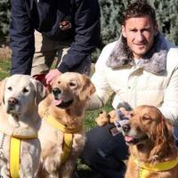 Da Francesco Totti a Serena Williams: i campioni e i loro amici a quattro zampe