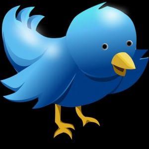 """Twitter, vietato copiare i """"cinguettii"""" senza citare la fonte"""