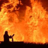 Italia tra siccità e incendi: in Gallura hotel e case evacuati, il caldo causa morìa di...