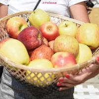 Rivoluzione a tavola: gli italiani spendono più per frutta e verdura che per carne