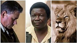 Giustizia per Cecil, il leone ucciso due a processo per bracconaggio    Foto  - Il killer ha pagato 50mila $