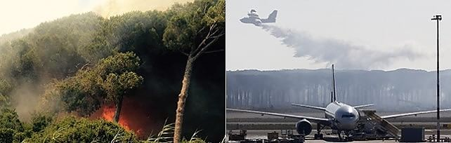 """Fiumicino nel caos: incendio doloso   video     Forestale : """" Roghi appiccati da più mani """""""
