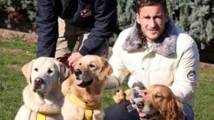 Da Totti a Serena Williams:  Campioni e amici a 4 zampe